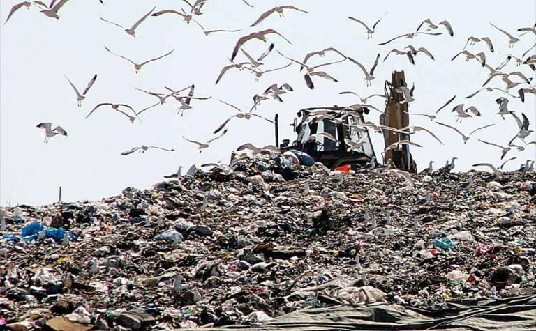 Raccolta trasporto smaltimento rifiuti speciali: dgeco.it
